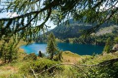 Lago di Campo - Adamello Trento Italien Stockfoto
