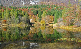Lago di Cei royaltyfria foton