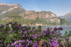 Lago di Como Fotografia Stock Libera da Diritti