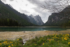 Lago di Dobbiaco (Toblacher See) Royalty Free Stock Photos