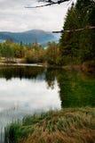 Lago di Dobiacco Fotografie Stock Libere da Diritti