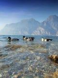 Lago di Garda - l'Italia fotografia stock