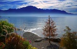Lago di Ginevra Fotografia Stock Libera da Diritti
