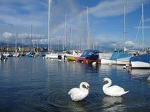Lago di Ginevra Fotografie Stock
