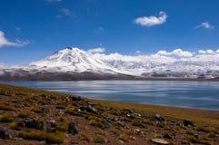 Lago di miscanti di Laguna con il vulcano Fotografie Stock