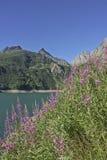 At Lago di Morasco Royalty Free Stock Image