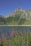 At Lago di Morasco Stock Images
