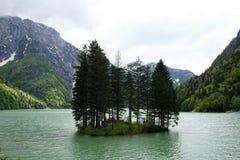 lago di Predil 库存照片