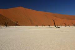 Lago di sale asciutto e dune rosse Immagini Stock Libere da Diritti