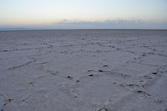 Lago di sale di EL Jerid nel Sahara. Immagine Stock Libera da Diritti