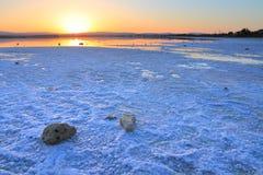 Lago di sale di Larnaca fotografia stock