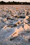 Lago di sale secco a Larnaca, Cipro fotografie stock