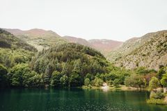 Lago di San Domenico, Abruzzo, Itália fotos de stock royalty free