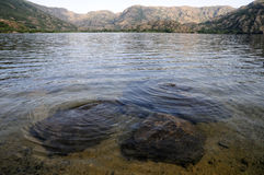 Lago di Sanabria, Spanien Royaltyfria Foton