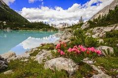 Lago di Sorapiss con el color asombroso de la turquesa del agua El mou fotos de archivo
