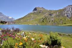 Lago di Tignes e dei fiori in Francia Fotografie Stock
