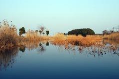 Lago Dianshan Foto de archivo