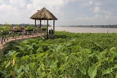 Lago-dimora sul fiume di Mekong, Vietnam fotografie stock