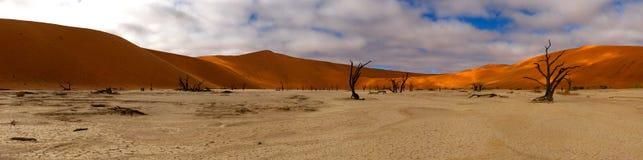 Lago do deserto de Namíbia secado Fotos de Stock