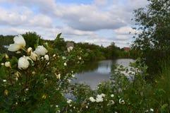 Lago do oval da vila Foto de Stock Royalty Free