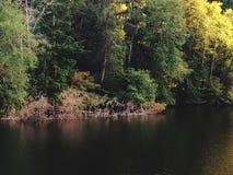 Lago do parque estadual de Sylvia do lago Imagens de Stock Royalty Free