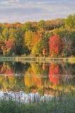 Lago doe del paisaje del otoño foto de archivo libre de regalías