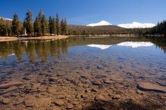 Lago dog nella sosta nazionale del Yosemite Fotografie Stock Libere da Diritti