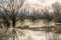 Lago Doirani, Grecia Fotografia Stock
