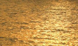 Lago dorato Fotografia Stock