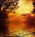 Lago dorato Fotografie Stock Libere da Diritti