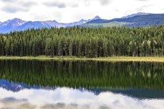 Lago dorato Immagini Stock Libere da Diritti
