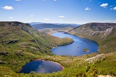 Lago dove Fotos de Stock