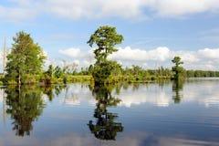 Lago Drummond 2 Fotografia Stock Libera da Diritti