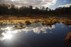 Lago durante o dia ensolarado Fotos de Stock