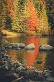 Lago durante a queda Imagens de Stock Royalty Free
