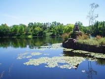 Lago e árvores fotografia de stock