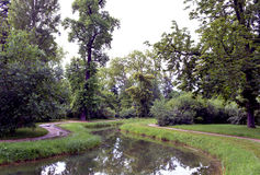 Lago e árvores Fotos de Stock Royalty Free