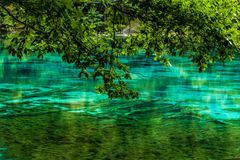 Lago e árvores no Vale Jiuzhaigou, Sichuan, China fotos de stock royalty free
