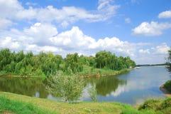 Lago e cielo blu con i salici sulla banca Immagini Stock