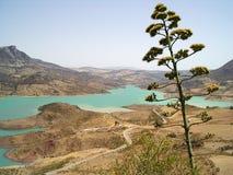 Lago e espinho Foto de Stock