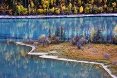 Lago e floresta Fotos de Stock Royalty Free