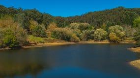 Lago e floresta Fotos de Stock