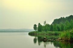 Lago e floresta no embaçamento imagem de stock royalty free