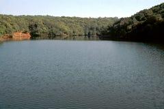 Lago e folha Imagem de Stock Royalty Free