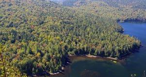 Lago e foresta Fotografie Stock Libere da Diritti