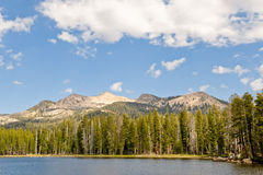 Lago e foresta mountain Fotografia Stock Libera da Diritti