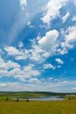 Lago e grama verde sob o céu azul e as nuvens brancas imagens de stock royalty free