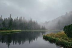 Lago e legno mountain intorno nel giorno nebbioso Fotografie Stock Libere da Diritti