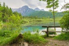 Lago e montagne in Almsee in Austria Fotografie Stock
