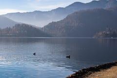 Lago e montagne del fondo di orario invernale Fotografia Stock